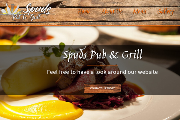 Dogfish Website Designers client website